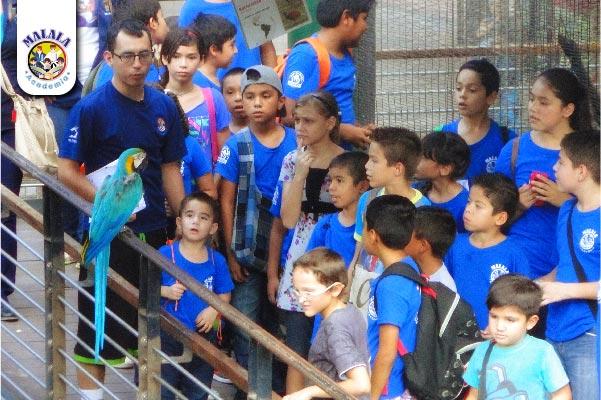Zoo05