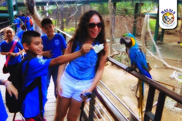 Zoo06